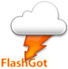 Плагин FlashGot. Скачать бесплатно FlashGot 1.4.8.4