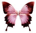 FlylinkDC++ - менеджер загрузок. Скачать бесплатно FlylinkDC++ r502 beta58 build 11241